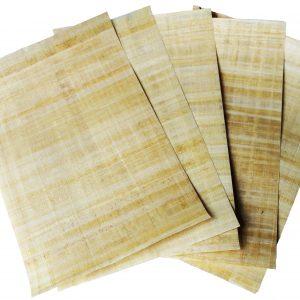 سیر رشد و تحول صنعت کاغذ سازی